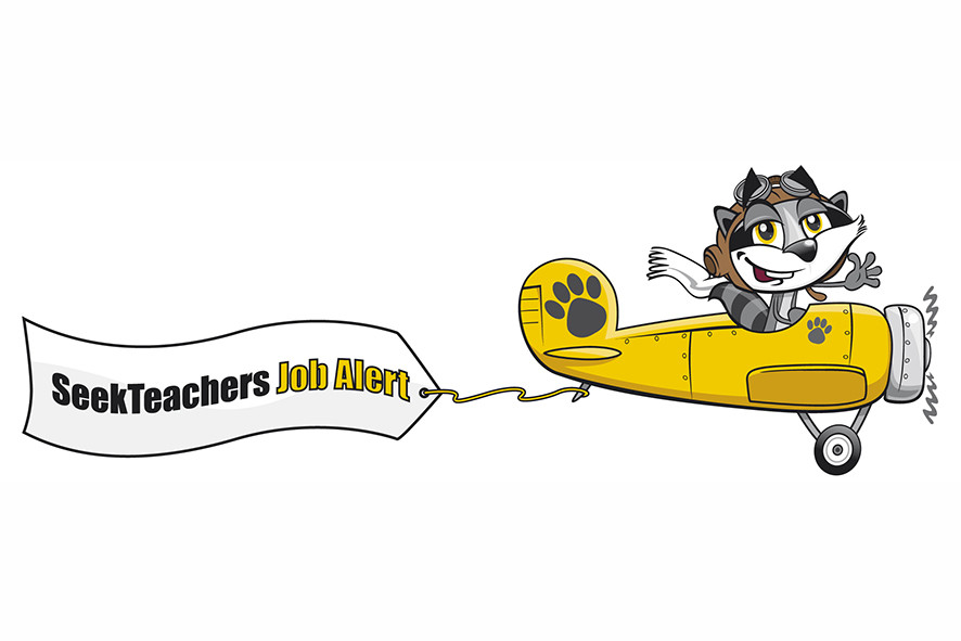 raccoon plane job alert